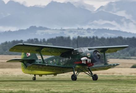 Wiedeńczyk An-2